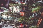 Heiliger BIM BAM - Party around the Christmas Tree