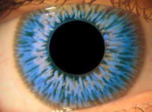 Das Schönste Auf Der Welt Blaue Augen Gruppe