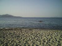Gruppenavatar von urlaub mit strand und meer???unbedingt!!!!!!