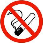 Gruppenavatar von Ich fang nie ins Rauchen an