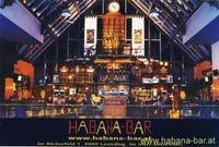 Coyoten Nacht@Habana-Bar