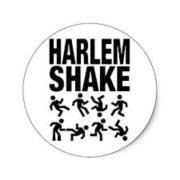 Harlem Shake Party