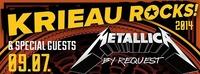 Krieau Rocks 2014 mit Metallica