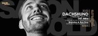 Salon Gold & Essential | Dachshund [clapper, 8bit, gruuv /CH]@SASS