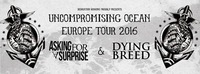 Asking For A Surprise (Ger) :: Dying Breed (Ger) :: Chasing Sounds@Kramladen
