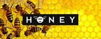 Honey at Aux Gazelles - Samstag 19.03.@Aux Gazelles