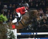 Gruppenavatar von SPRINGREITEN - die Elite des Pferdesports