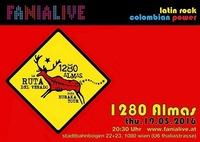 1280 almas aus kolumbien@Fania Live