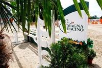 Nationales Spring - und Dressurturnier@Magna Racino