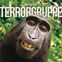 Terrorgruppe -