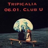 Tripicalia