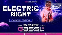 Electric Night - Carnival Edition@Gassl