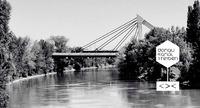 Donaukanaltreiben 2017@Grelle Forelle