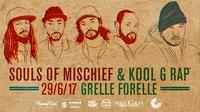 Kool G Rap / Souls Of Mischief / Vienna@Grelle Forelle