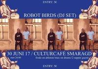 ROBOT BIRDS (DJ Set) im CC Smaragd@Smaragd