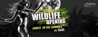 Opening - Wildlife - Dance in the Summer / empire@Empire Club