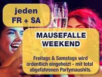 Jeden Freitag - Partytime@Mausefalle