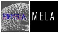Mela & Kometa@Chelsea Musicplace