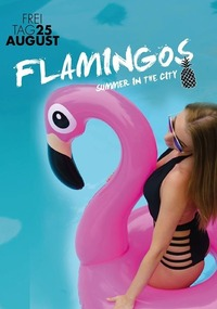 Flamingos at Johnnys # MEGA Summerend@Johnnys - The Castle of Emotions