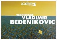Vernissage: Vladimir Bedenikovic@academy Cafe-Bar