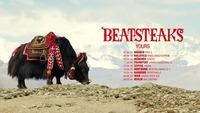Beatsteaks - Wien - Arena Open Air@Arena Wien