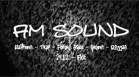 AM SOUND - Fluc - 29.12.@Fluc / Fluc Wanne