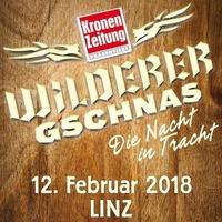 Wilderer Gschnas 2018@Palais Kaufmännischer Verein