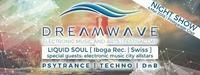 DREAM WAVE Night mit Liquid Soul live@Postgarage