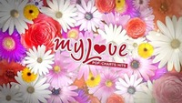 My Love Spring Feelings - Fr, 9.3 - Zick Zack@ZICK ZACK