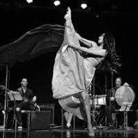 The Vienna Expatriate Ensemble | FEATURING ORWA SALEH & FRIENDS