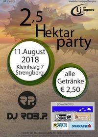 2,5 Hektar Party@Kleinhaag