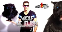Wolf Le Funk LIVE@Sugarfree