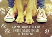 Userfoto von Verena-95