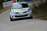30. Internationale Jänner Rally 2013 11068550