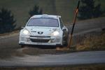 30. Internationale Jänner Rally 2013 11073324
