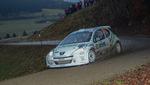 30. Internationale Jänner Rally 2013 11073326