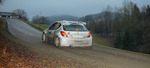 30. Internationale Jänner Rally 2013 11073327