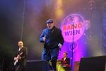 Wiener Silvesterpfad 2013/2014 11894195