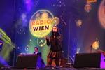 Wiener Silvesterpfad 2013/2014 11894200