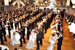 Ball der Tanzschule Seifert 11931831