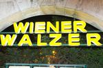 7. Wiener Technoball