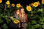 Sunflowerparty mit