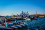 Summer Splash Cruise 13961502