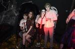 Halloween - The Dark Forest