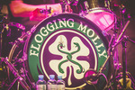 Flogging Molly & Dropkick Murphys in Wien 14250396