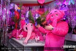 Pink Elephant – the Light Experience!