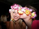 Hawaii Fest 4273129