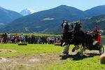 Südtiroler Ritterspiele Schluderns 4441795