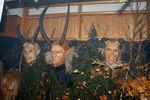 5. Maskenausstellung der Selzthaler Moosteufeln 4686053