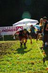4. Highlander Games 2010  8626512